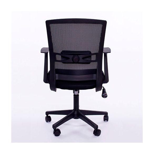 Michelangelo szék